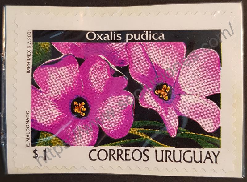 sello uruguay 2001 flor oxalis pudica