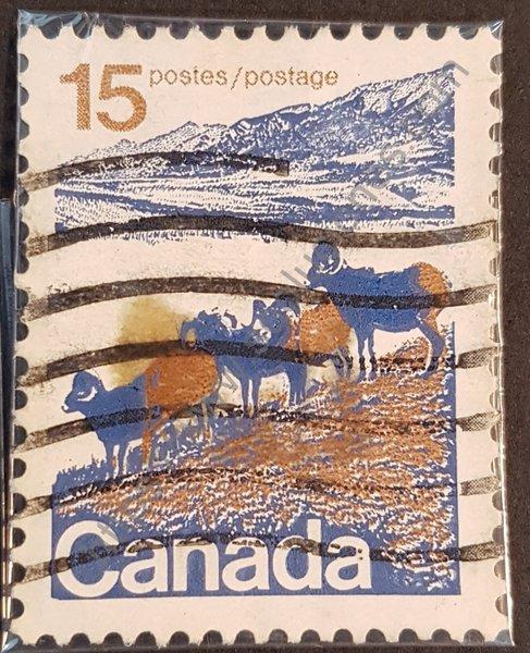 Ovis canadensis estampilla de Canadá año 1967