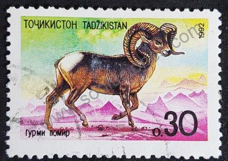Estampilla de Tayikistán 1992 con imagen de Argalí