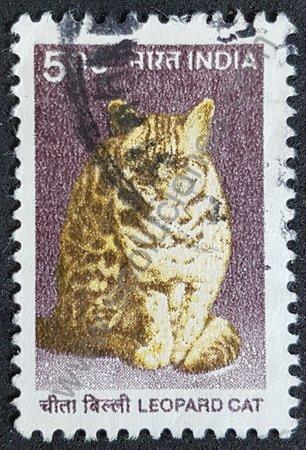 Sello: India año 2000 Gato Leopardo