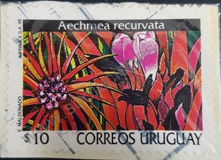 Aechema recurvata sello Uruguay 1998