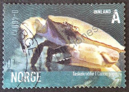 Vida marina sello Noruega 2007 cangrejo Pagurus