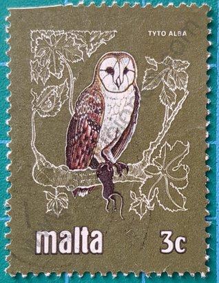 Sello Malta 1981 lechuza común - Tyto alba