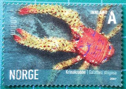 01329 sello Noruega 2007 Galathea strigosa