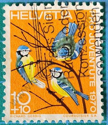 Sello Suiza 1970 Carbonero común