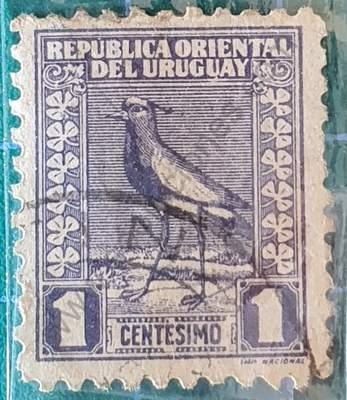 Tero - Vanellus chilensis 1c - Sello Uruguay 1927