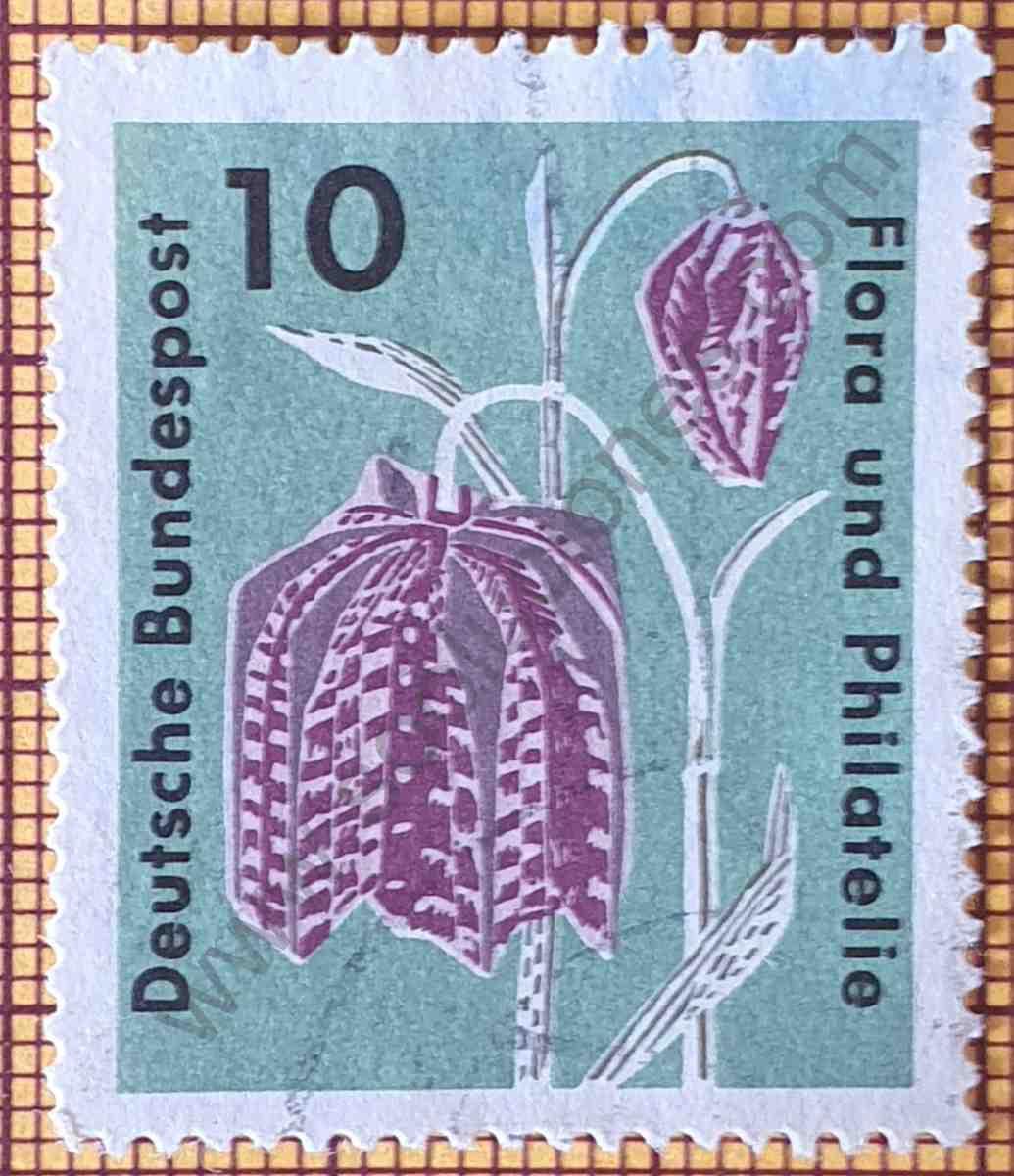 Flor Cabeza de Serpiente - Estampilla de Alemania año 1963