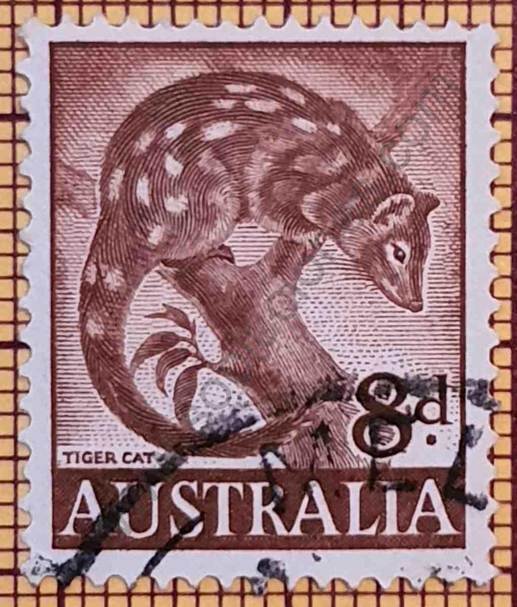 Sello con Gato Tigre - Australia 1960