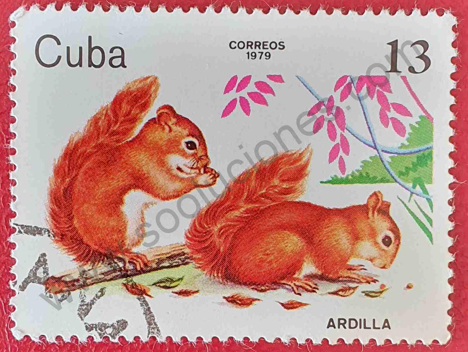 Ardillas rojas - Sello de Cuba año 1979
