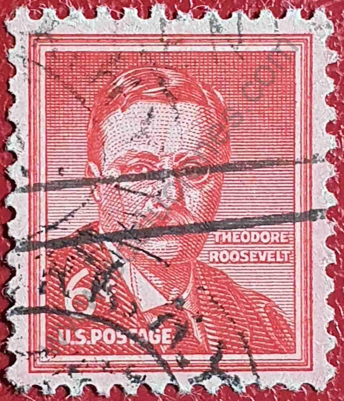 Theodore Roosevelt - Sello Estados Unidos 1955