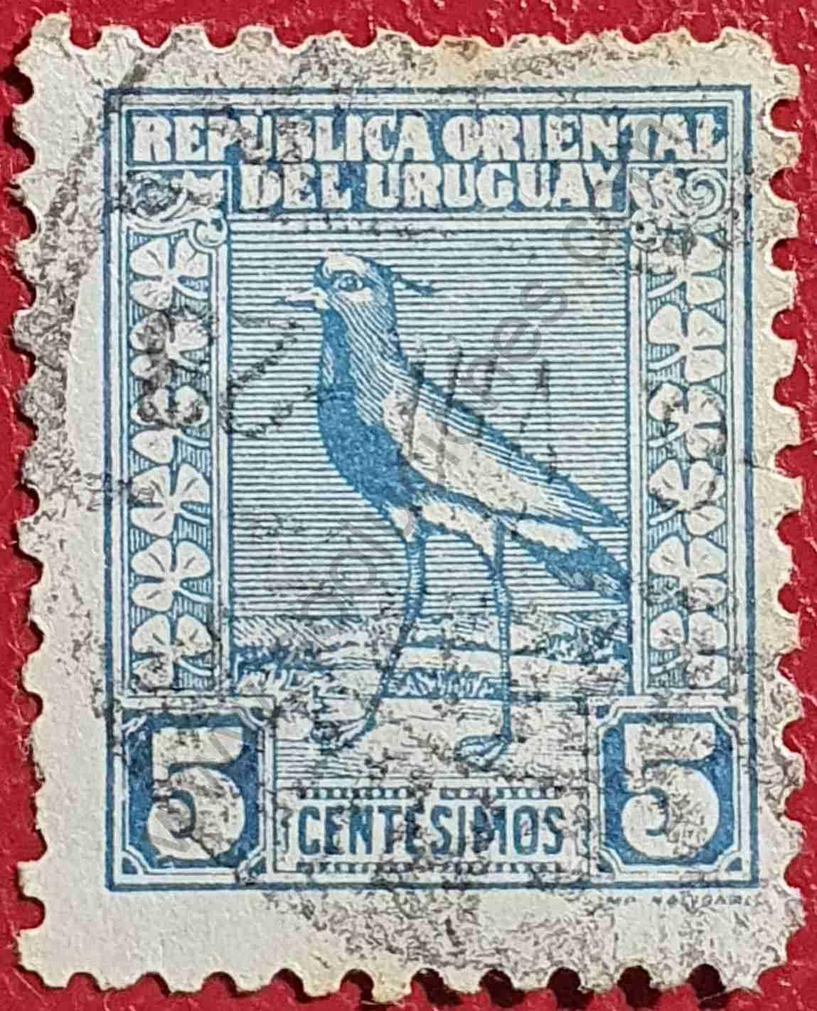 Vanellus chilensis 5c - Sello de Uruguay 1927