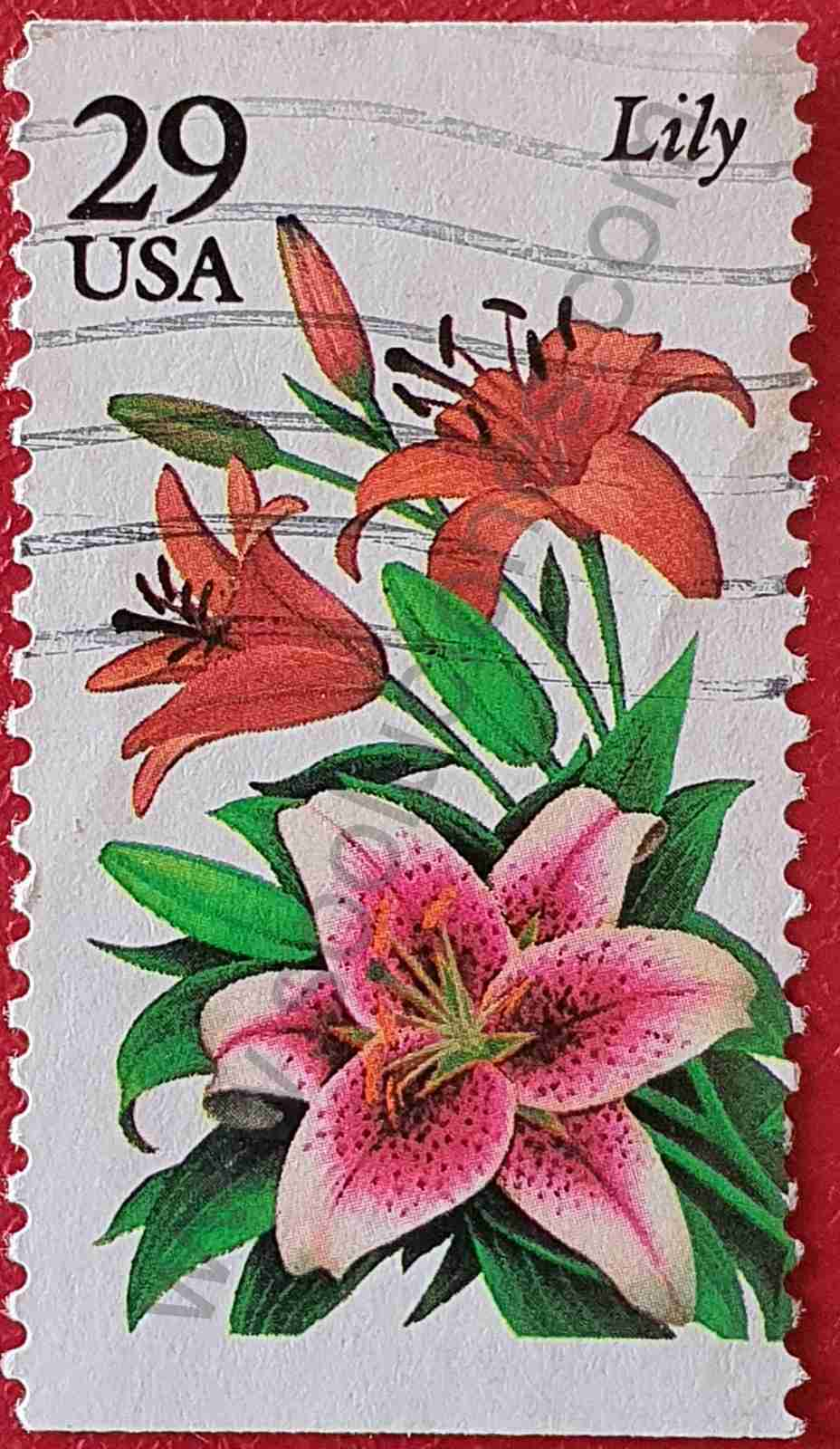 Flor Lila - Sello Estados Unidos 1994