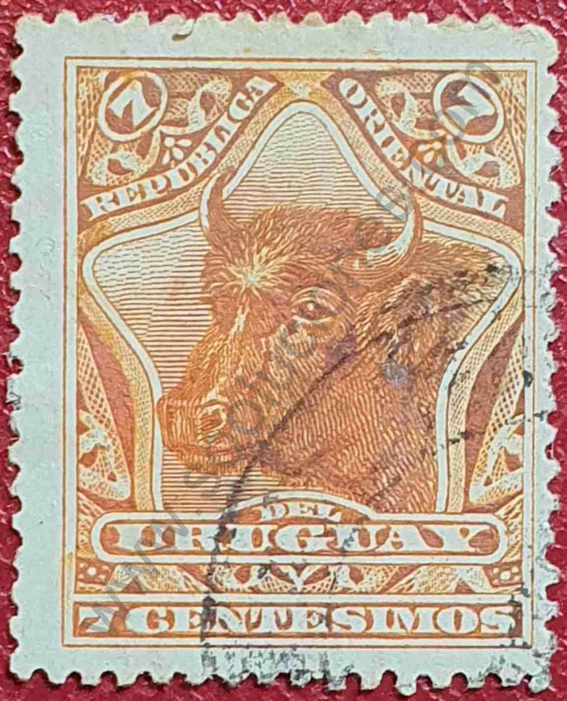 Cabeza de toro - Sello Uruguay 1897