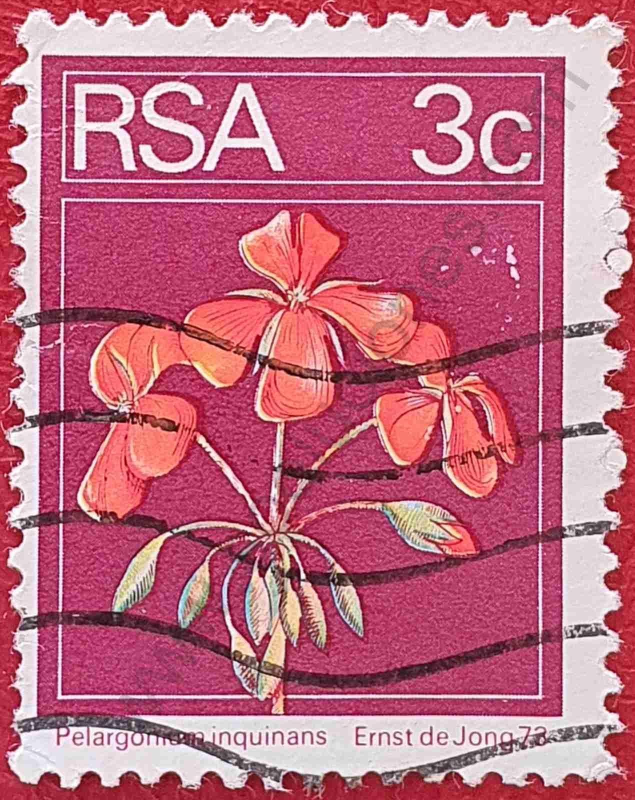 Sello Geranio escarlata - Sudáfrica 1976