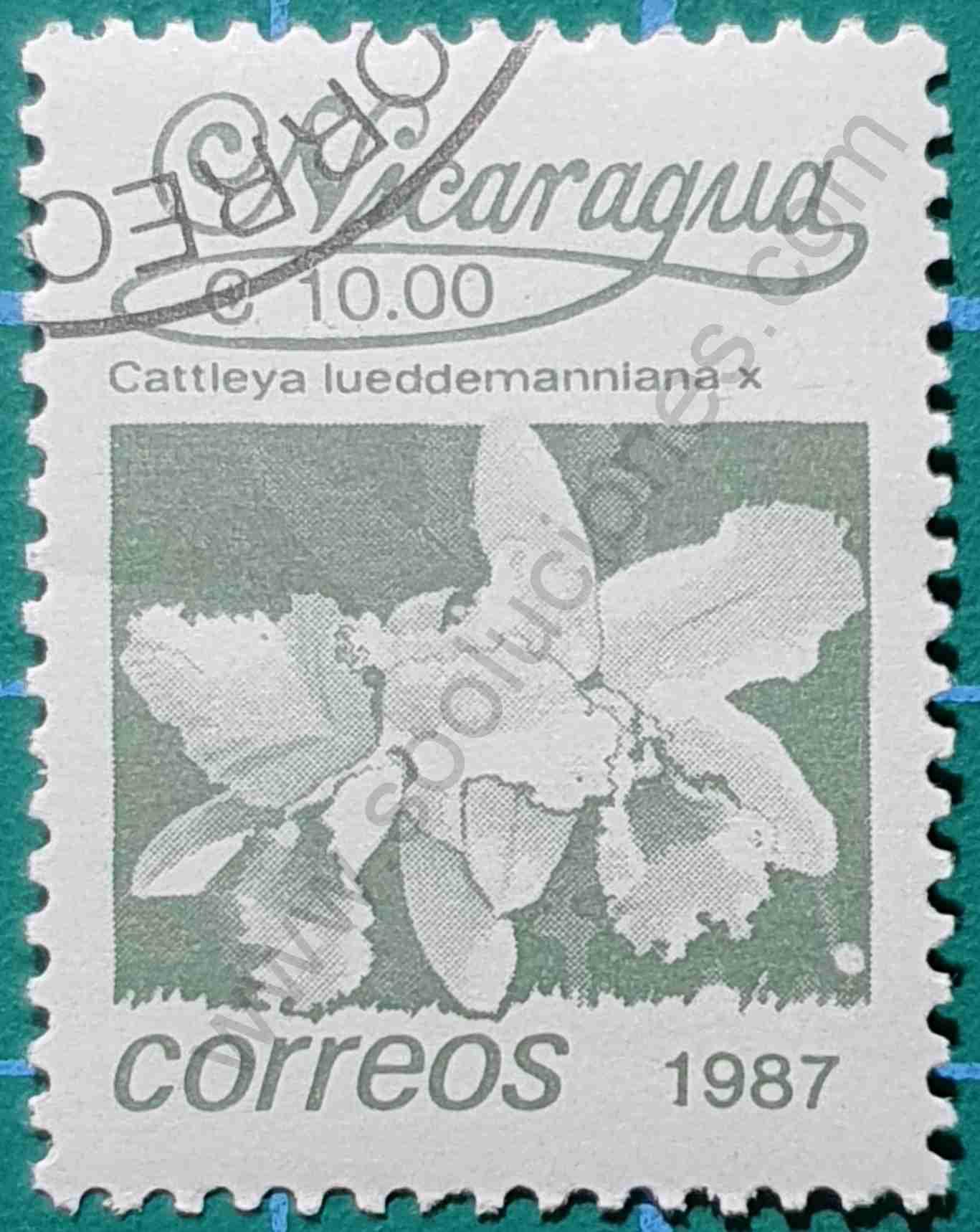 Flor Cattleya Lueddemanniana - Sello Nicaragua 1987