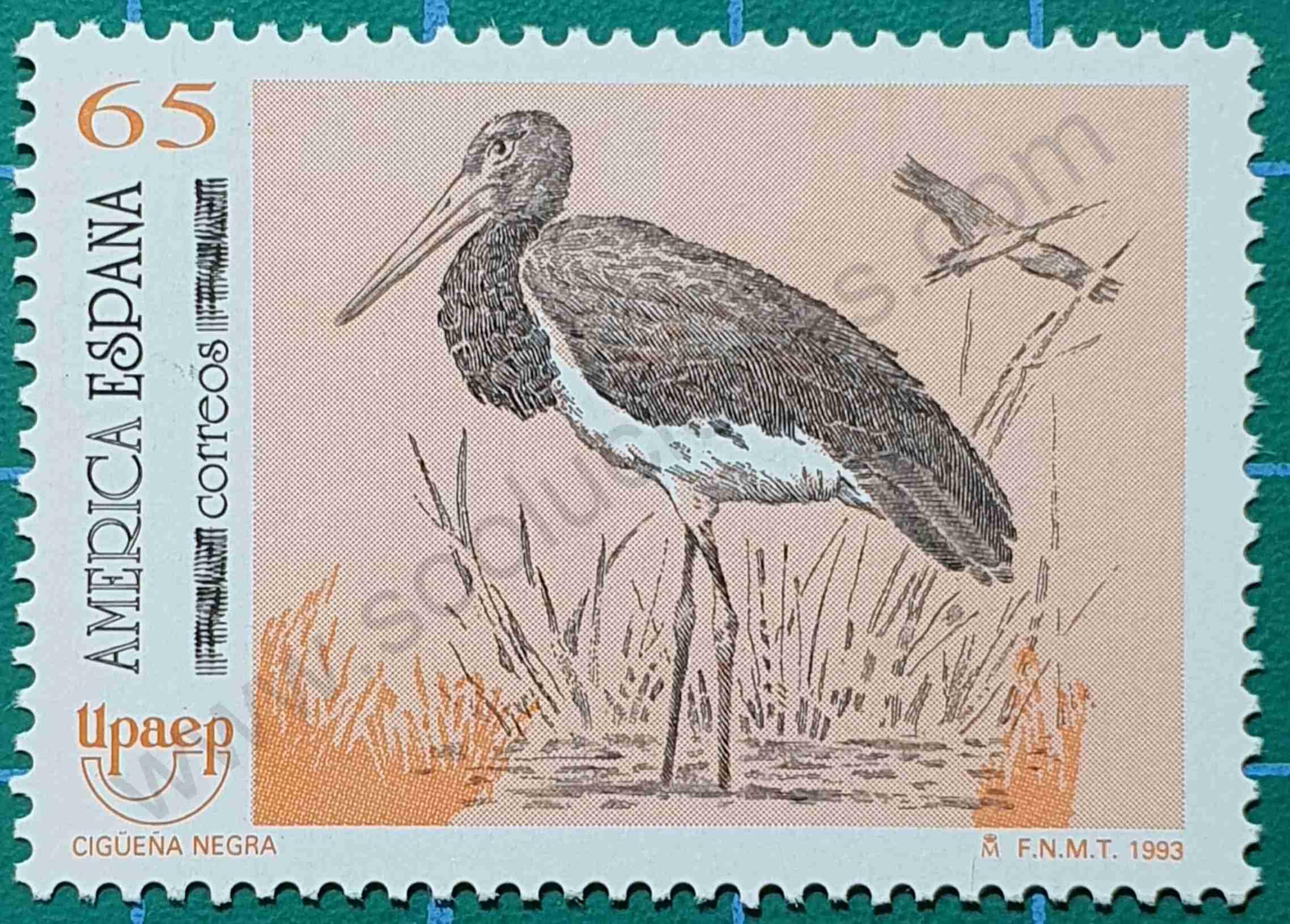 Cigüeña negra - sello España 1993