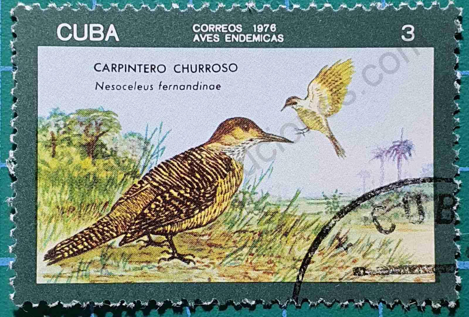 Carpintero de Tierra - sello Cuba 1976