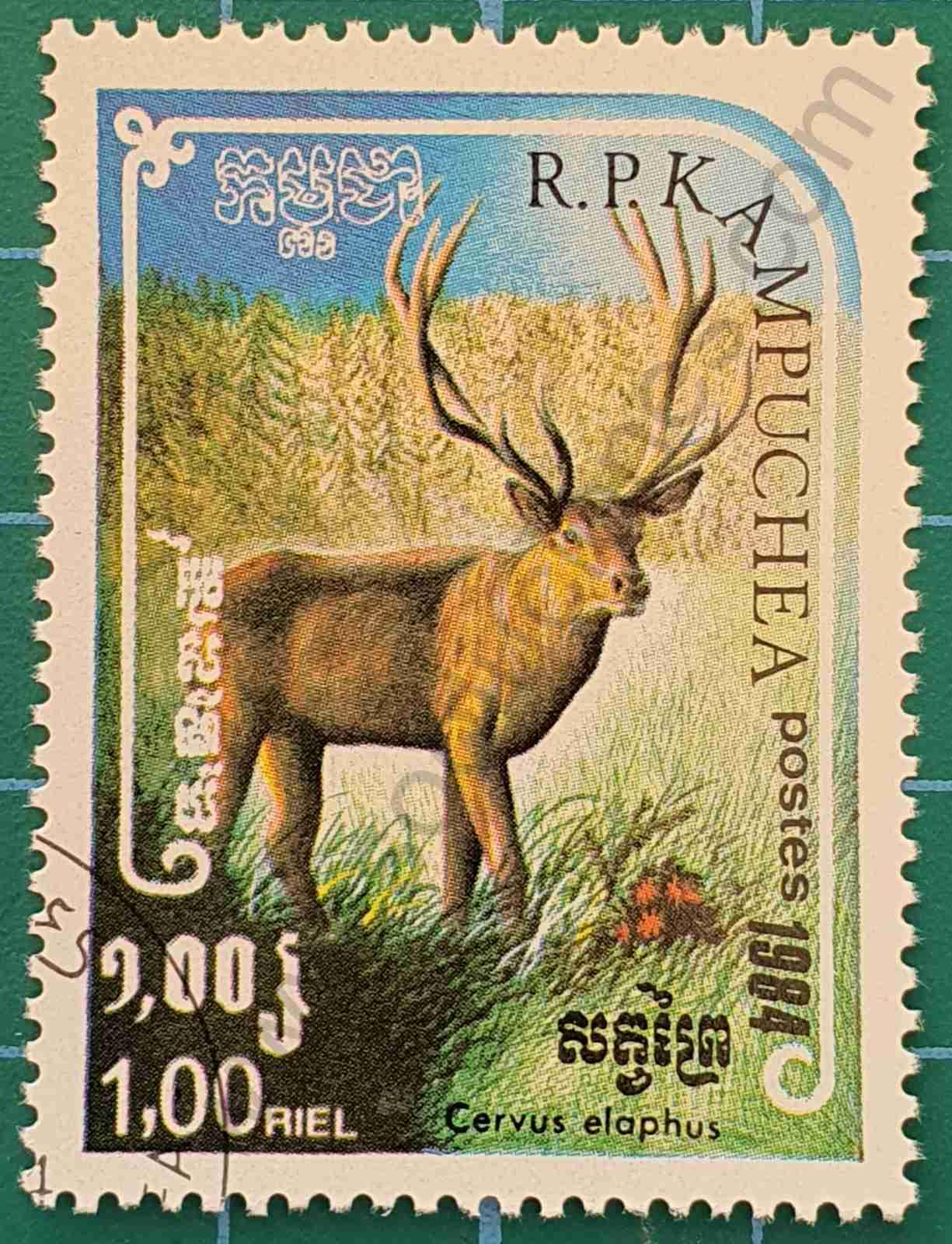 Ciervo rojo - sello Camboya 1984