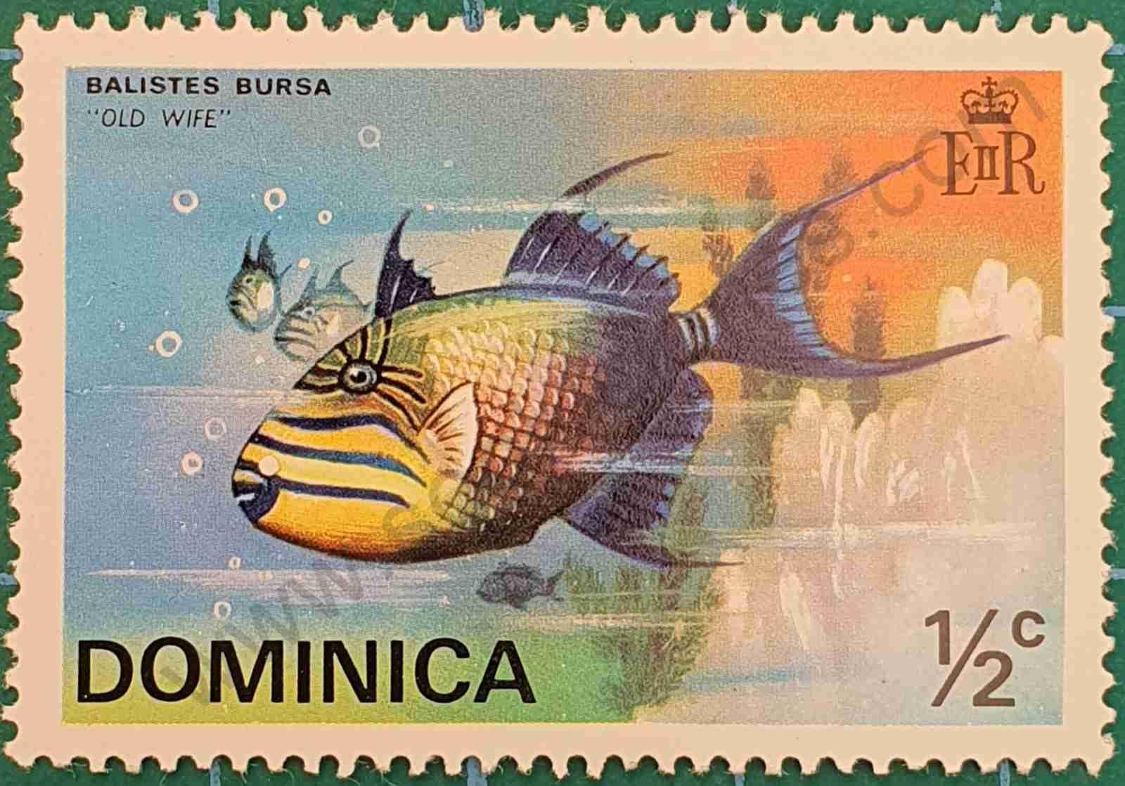 Pez ballesta - sello Dominica 1975