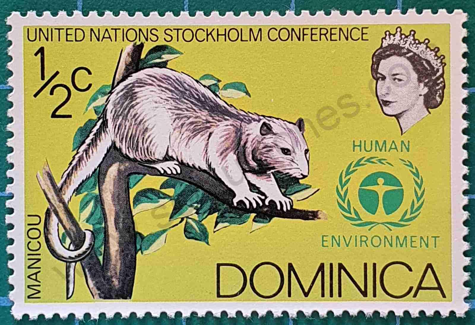 Zarigüeya común - sello Dominica 1972